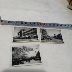 老照片(五十年代青岛街景3张合售)