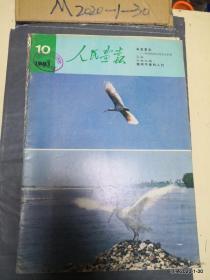 人民画报 1981年第10期