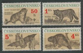 捷克斯洛伐克邮票 1990年 受保护动物 鼹鼠 山猫 蝙蝠等 雕刻版 4全新