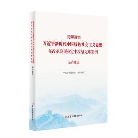 (党政)贯彻落实习近平新时代中国特色社会主义思想再改革发展稳定中攻坚克难案例---经济建设