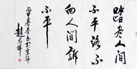 赵忠祥书法精品  编号12506
