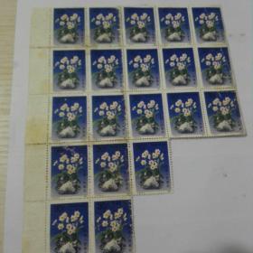 A1852   水仙 邮票20张合售