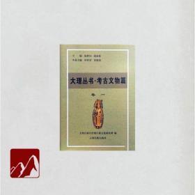 大理丛书 考古文物篇16开精装 全10册 原箱装