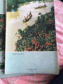 南国水乡荔枝红 卡片