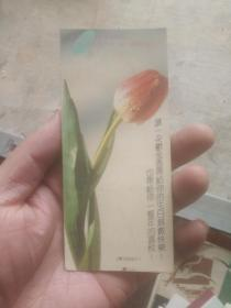 老版明信片散片 郁金香