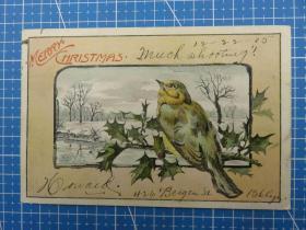 美国1905年--闪光粉-圣诞花卉小鸟图--圣诞祝福-手写--贴邮票实寄--圣诞节贺卡明信片(101)-收藏集邮绘画-复古手账素材-外国邮政-明信片