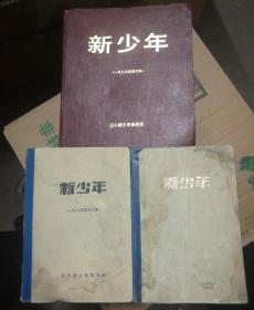 《新少年》杂志合订本: (1985年1期-24期) (1987年1期-24期) (1989年1期-12期)