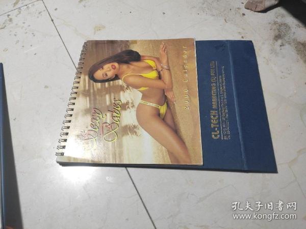 2000年外国美女 台历