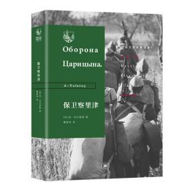 俄苏文学经典译著·保卫察里津