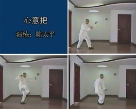 陈太平 少林心意把 教学VCD1牒