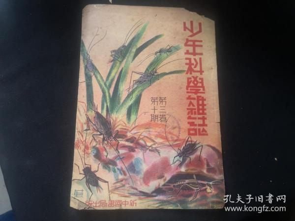 1936年 少年科学杂志 第三卷第十期  缺封底