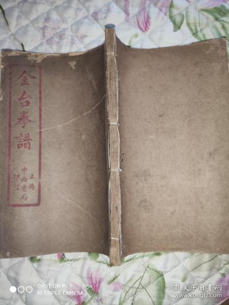 民国20版全图本《金台拳谱》(拳术类书内含八卦拳降妖拳猴拳三种)全一册