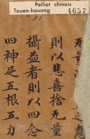 敦煌遗书 法藏 P4657大般涅槃经手稿。纸本大小30*110厘米。宣纸原色微喷印制。