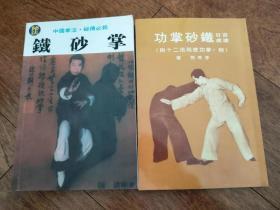 龙清刚秘法铁砂掌+李英昂百日速成铁砂掌功  2册合售