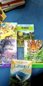 沈石溪动物小说