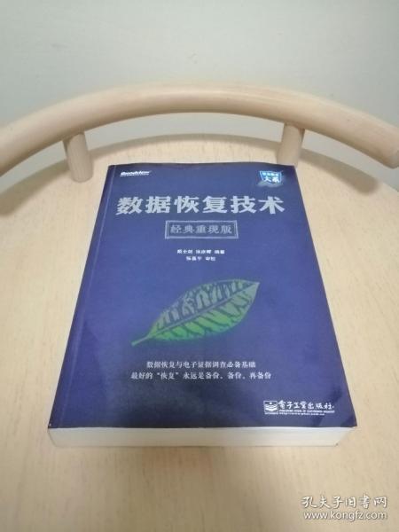 数据恢复技术(经典重现版)