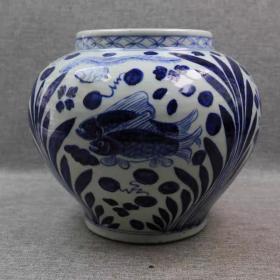 青花鱼藻纹罐