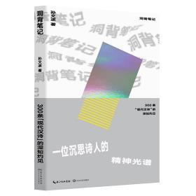 洞背笔记:300条现代汉诗的深知灼见 孙文波 长江文艺出版社