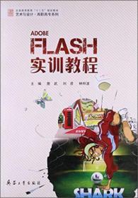 Flash实训教程