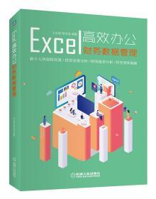 Excel高效办公财务数据管理