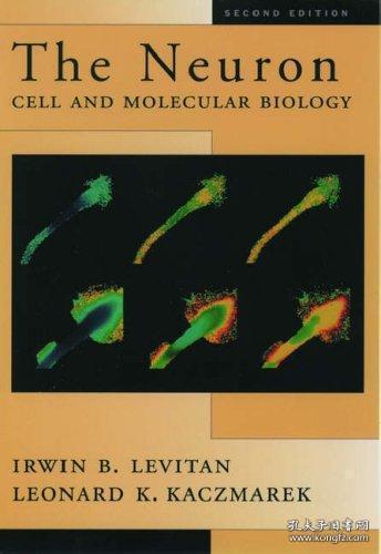 【包邮】The Neuron: Cell and Molecular Biology 1996年出版