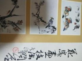 花鸟画技法问答