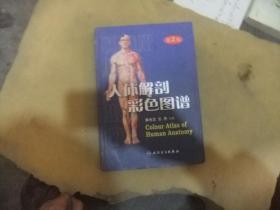 人体解剖彩色图谱 第2版