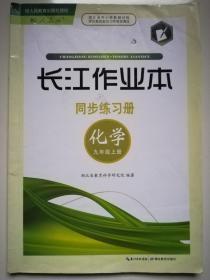 长江作业本 同步练习册 化学 九年级上册