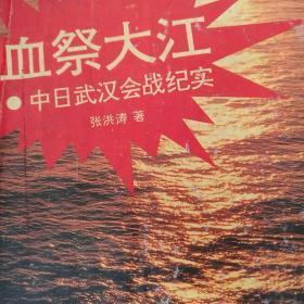 血祭大江:中日武汉会战纪实