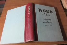 Word Wise: Dictionary Of English Idioms (  硬精装 巧妙措辞——英语成语词典 32开592页)