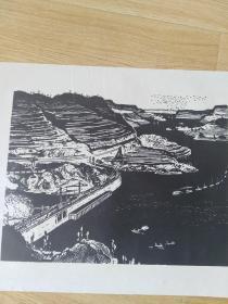 五六十年代朵云轩木板水印版画