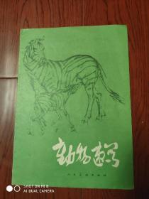 《动物速写》人民美术出版1979年7月1版1印 袁熙坤 作