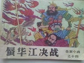 蜃华江决战