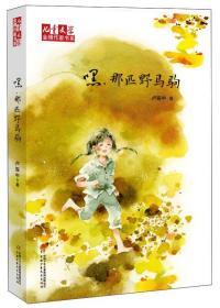 【新】儿童文学金牌作家书系:嘿,那匹野马驹/新