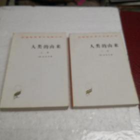 人类的由来(全两册)