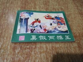 真假两猴王【西游记连环画之十四】