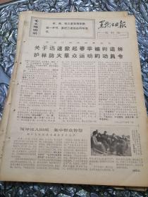 黑龙江农村报1970年4月5日(8开四版)你迅速掀起春季植树造林,护林防火群众运动的动员令;领导深入田间,集中群众智慧