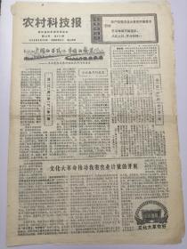 老报纸:1976.5.28农村科技报:知青题材 (折叠寄送)八开四版