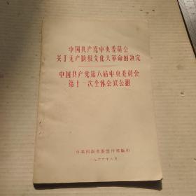 中国共产党中央委员会关于无产阶级文化大革命的决定   中国共产党第八届中央委员会第十一次全体会议公报