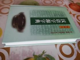 汉语字源字典  图解本   释义精准  追根溯源  图文并茂
