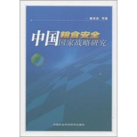 中国粮食安全国家战略研究
