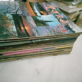 印刷技术        杂志 共44本