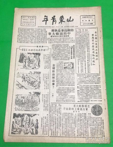 《山东青年》1950年9月 第56期 报有:连环画、全国劳模骆淑芳、单家庄青年的学习方法介绍