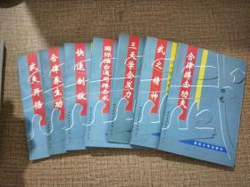 《现代武学系列丛书》全八册,田克  最后3套,包邮!