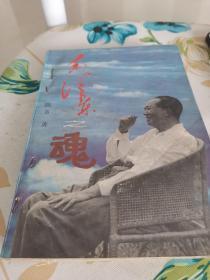 毛泽东之魂5