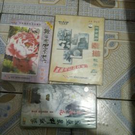 孙钰德国画教学VCD(3盒13碟合售)