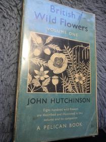 BRITISH WILD FLOWERS   BY JOHN HUTCHINSON 插图版  鹈鹕经典系列 PELICAN 18.2x11cm