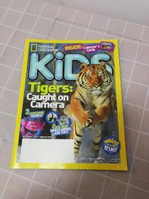 KIDS Tigers caught on camera