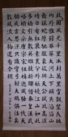 手书真迹书法:杨德山楷书毛泽东《沁园春 雪》(四尺)