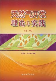 天然气开发理论与实践(第二辑)